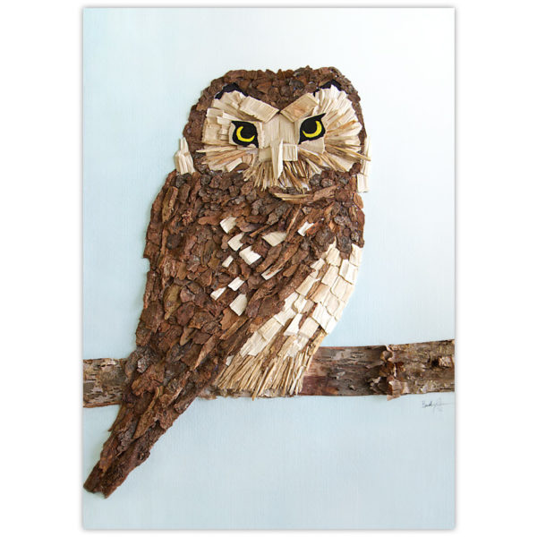 Boreal Owl image made from wood chips and bark from the boreal forests of northern Alberta