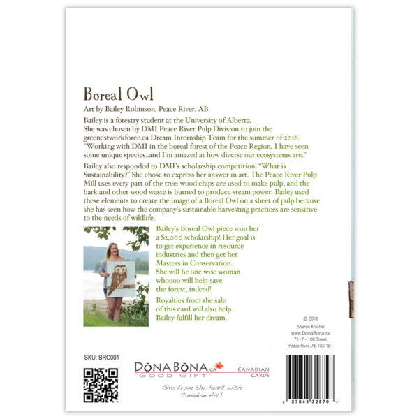 Boreal-Owl-3