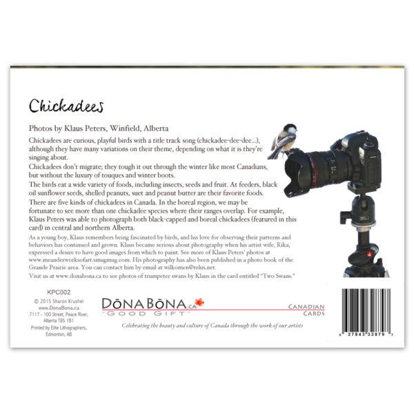 Chickadees-3