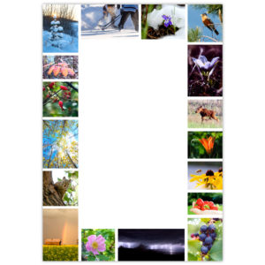 17 photos depicting the flora and fauna, landscapes and activities throughout winter, spring, summer and fall