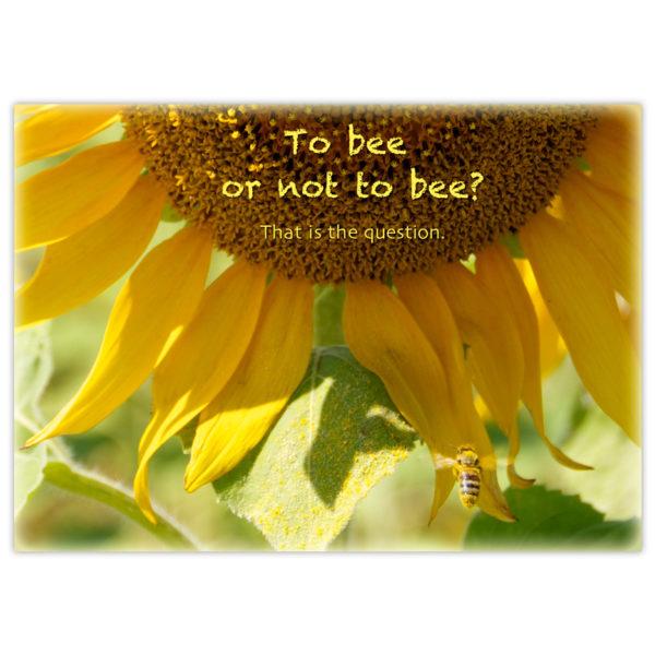 a pollen-covered honey bees flies upward into a huge sunflower