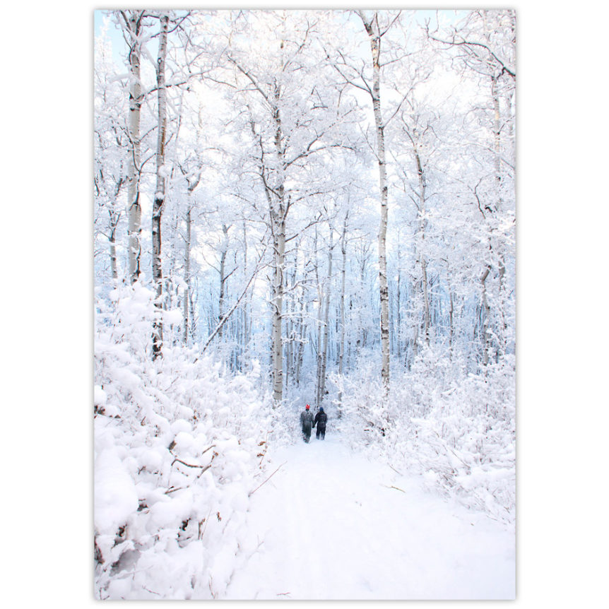 Two people walk hand in hand in a winter wonderland with tall, snow-covered aspen trees lining their path in the Peace River hills of northern Alberta