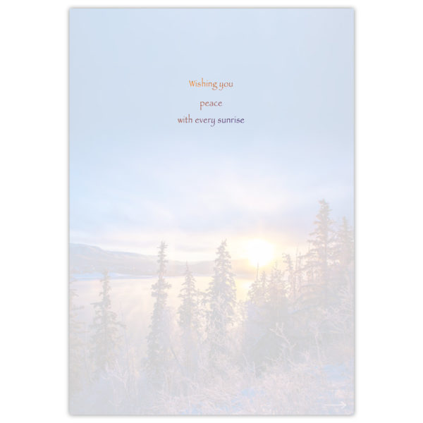 Winter-Sun-Rising-2