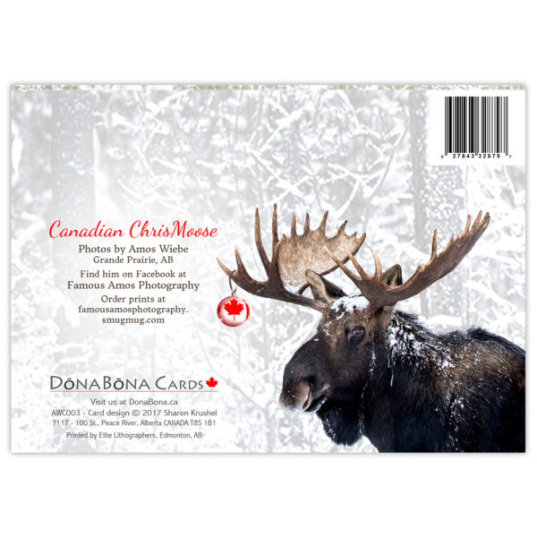 Bull Moose with a Canadian Flag Christmas ball hanging from his antlers