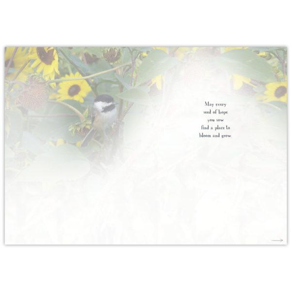 a chickadee sits amongst the sunflowers