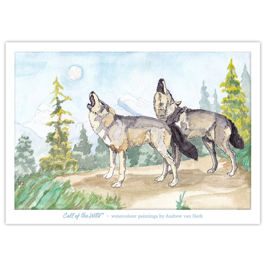 Watercolour painting of two wolves howling