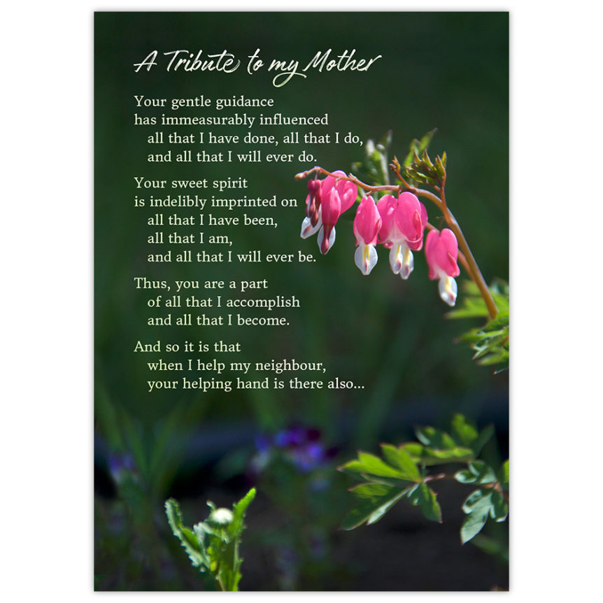 Bleeding Hearts flowers and a poem - a Tribute to my Mother