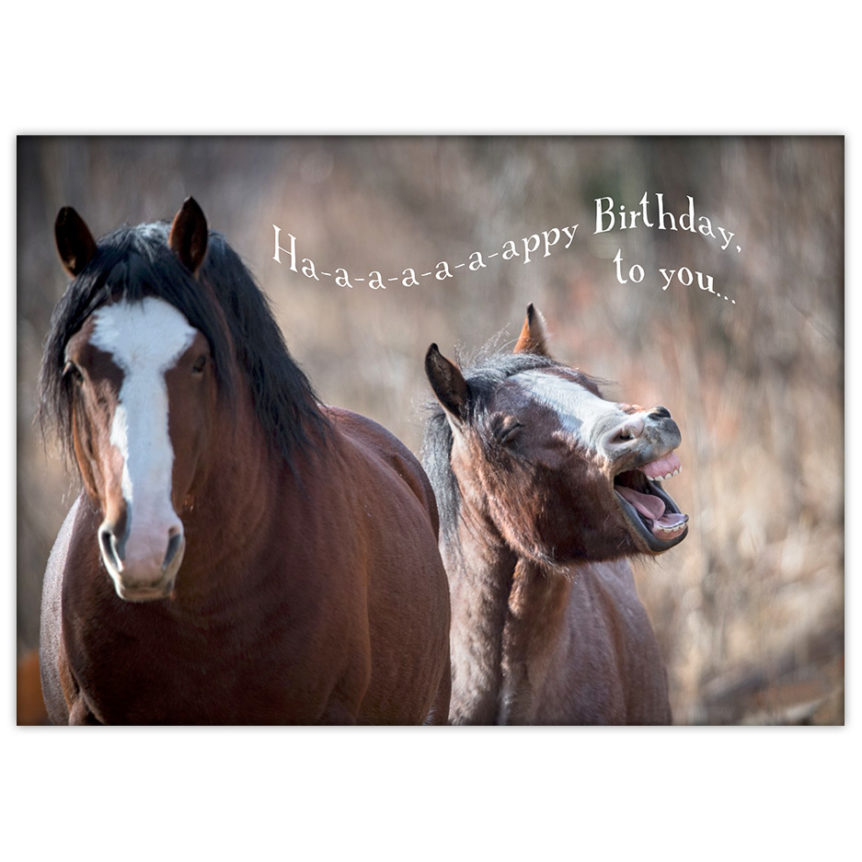 "Whinnying wild horses singing ""Happy Birthday to You!"""