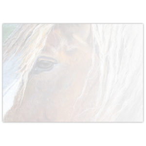 painting of a horse's face